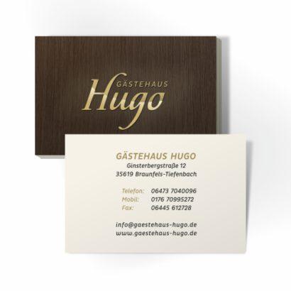 Hugo_02.jpg