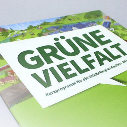 gruene_Wahlprogramm_Aachen_03.jpg